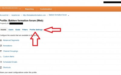 How to delete a site from google analytics (With Screen Shots)